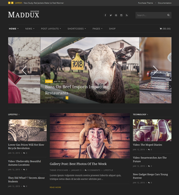 Maddux WordPress Theme
